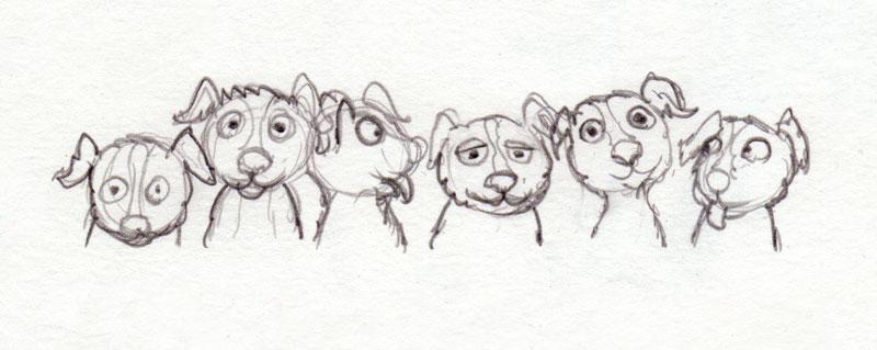 jonge hondjes